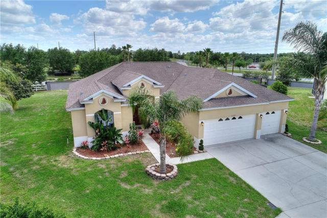 4150 Copper Hill Drive, Spring Hill, FL 34609 (MLS #O5784651) :: Premium Properties Real Estate Services
