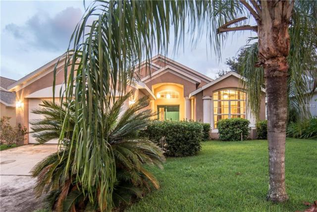 15738 Autumn Glen Avenue, Clermont, FL 34714 (MLS #O5784809) :: Premium Properties Real Estate Services
