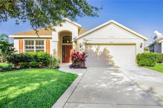 12711 Avelar Creek Drive, Riverview, FL 33578 (MLS #O5784875) :: The Duncan Duo Team