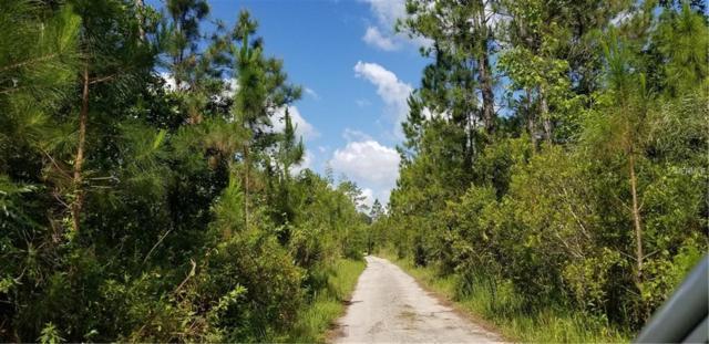 No Street Name, Lake Helen, FL 32744 (MLS #O5784878) :: The Duncan Duo Team