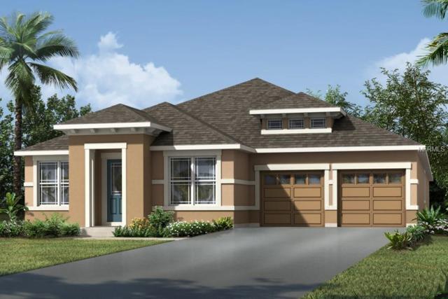 14841 Winkfield Court, Winter Garden, FL 34787 (MLS #O5784899) :: The Brenda Wade Team