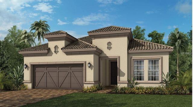 1245 Zeek Ridge Street, Clermont, FL 34715 (MLS #O5784924) :: Team Bohannon Keller Williams, Tampa Properties