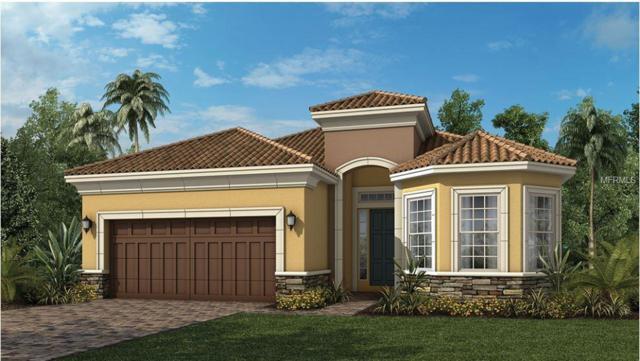 1241 Zeek Ridge Street, Clermont, FL 34715 (MLS #O5784928) :: Team Bohannon Keller Williams, Tampa Properties