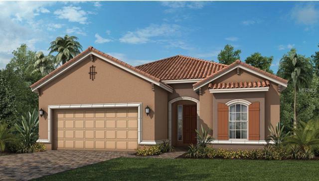 1230 Zeek Ridge Road, Clermont, FL 34715 (MLS #O5784951) :: Team Bohannon Keller Williams, Tampa Properties