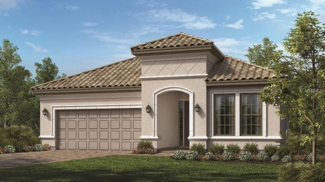 1195 Esperanza Ridge Road, Clermont, FL 34715 (MLS #O5784955) :: Team Bohannon Keller Williams, Tampa Properties