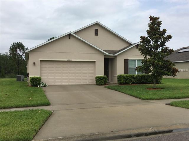 16653 Broadford Lane, Clermont, FL 34714 (MLS #O5784985) :: Team Bohannon Keller Williams, Tampa Properties