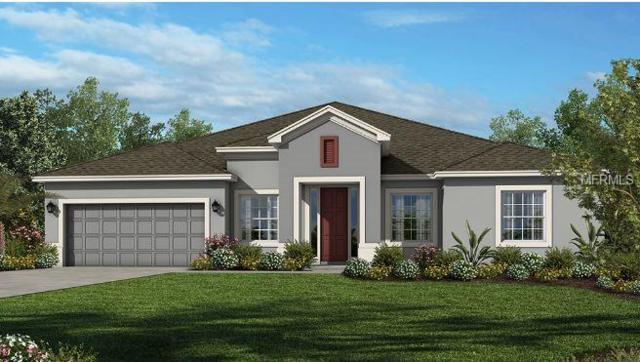 14211 Sunridge Boulevard, Winter Garden, FL 34787 (MLS #O5785096) :: The Duncan Duo Team
