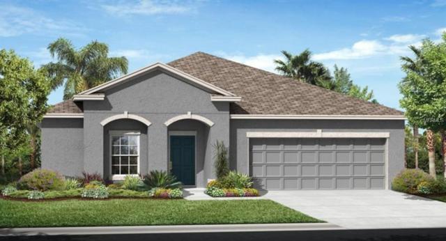 7451 Oakmark Road, Harmony, FL 34773 (MLS #O5785145) :: Team Bohannon Keller Williams, Tampa Properties