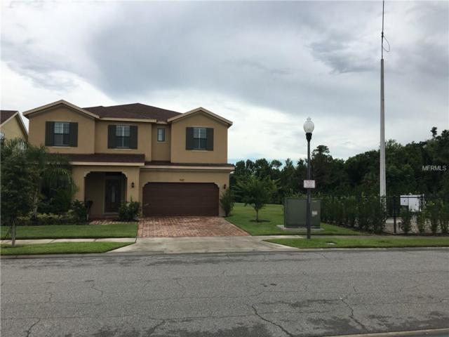 940 Fountain Coin Loop, Orlando, FL 32828 (MLS #O5785163) :: Team Suzy Kolaz