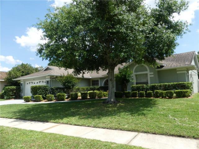 4075 Kiawa Drive, Orlando, FL 32837 (MLS #O5785255) :: Bustamante Real Estate