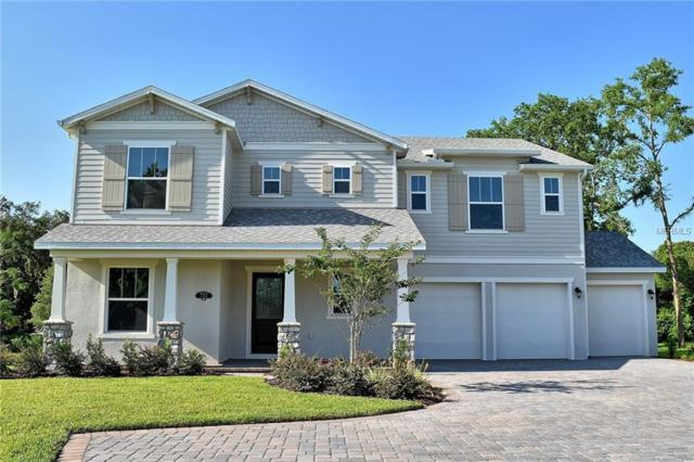 724 Primrose Willow, Apopka, FL 32712 (MLS #O5785286) :: Bustamante Real Estate