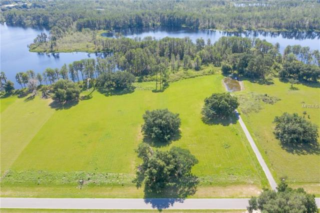 5040 Lakeshore Ranch Road, Groveland, FL 34736 (MLS #O5785292) :: The Duncan Duo Team