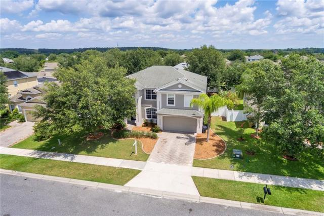 15317 Groose Point Lane, Clermont, FL 34714 (MLS #O5785309) :: Bustamante Real Estate