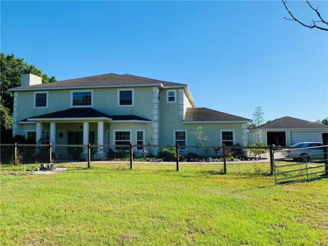 4460 N Fort, Christmas, FL 32709 (MLS #O5785348) :: Godwin Realty Group