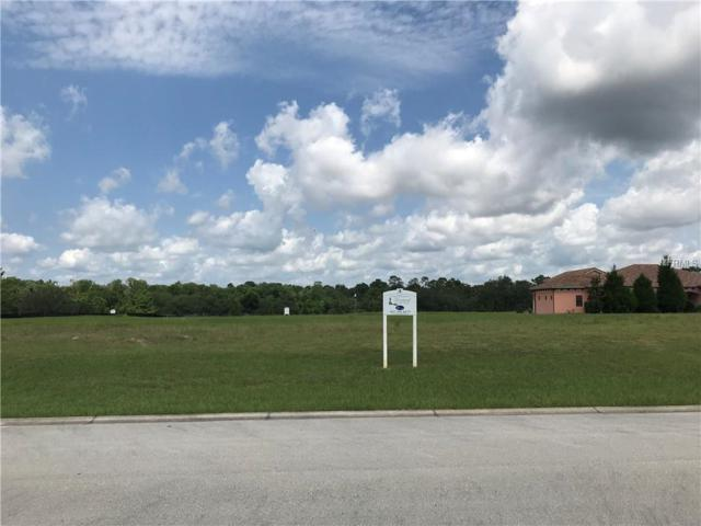 1008 Coyote Creek Way, Reunion, FL 34747 (MLS #O5785352) :: RE/MAX Realtec Group