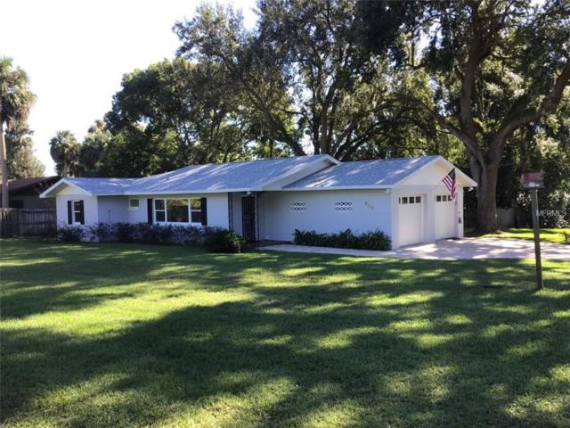 810 W 11TH Avenue, Mount Dora, FL 32757 (MLS #O5785437) :: Team Bohannon Keller Williams, Tampa Properties