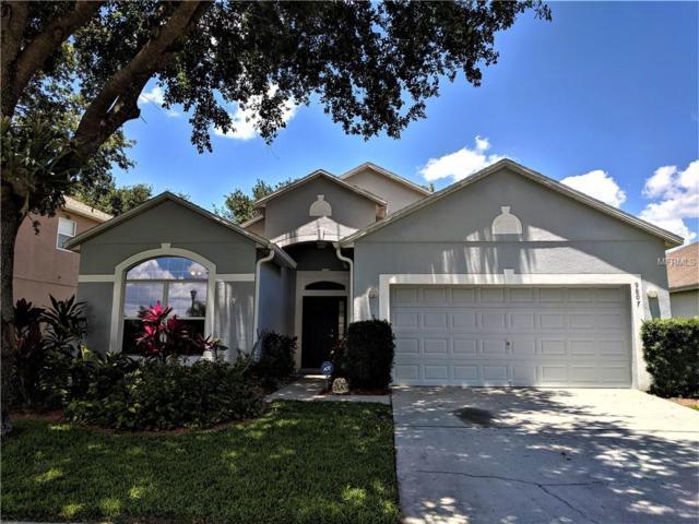 9807 Secret Cove Lane, Orlando, FL 32832 (MLS #O5785439) :: The Light Team