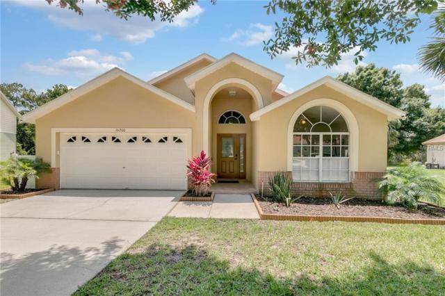 16200 Magnolia Hill Street, Clermont, FL 34714 (MLS #O5785463) :: The Duncan Duo Team
