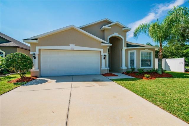 8101 Tar Hollow Drive, Gibsonton, FL 33534 (MLS #O5785553) :: Dalton Wade Real Estate Group