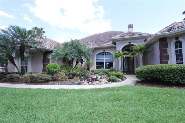 13037 Water Point Boulevard, Windermere, FL 34786 (MLS #O5785556) :: Bustamante Real Estate