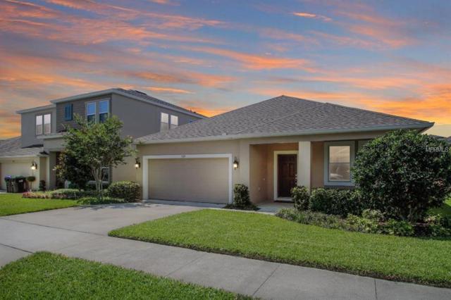930 Hilltop Park Court, Apopka, FL 32703 (MLS #O5785563) :: Cartwright Realty
