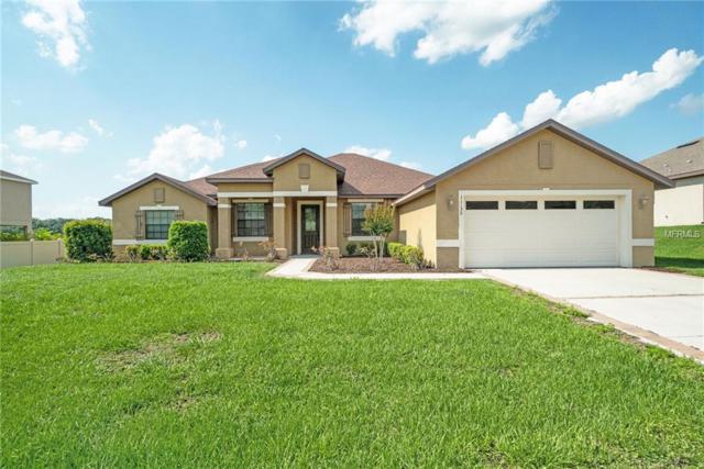 11129 Scenic Vista Drive, Clermont, FL 34711 (MLS #O5785580) :: Team Bohannon Keller Williams, Tampa Properties