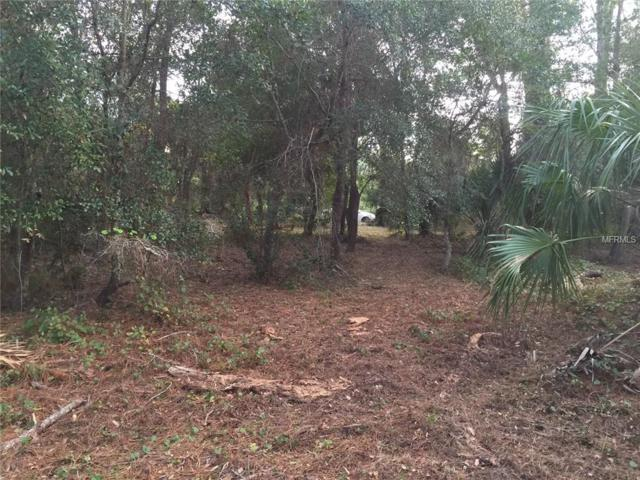Pervis Lane, Osteen, FL 32764 (MLS #O5785593) :: The Duncan Duo Team