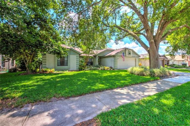 3333 Spotted Fawn Drive, Orlando, FL 32817 (MLS #O5785627) :: Team Bohannon Keller Williams, Tampa Properties