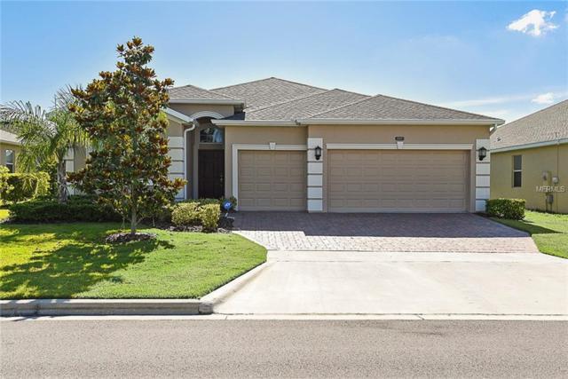 3505 Bavaro Way, Clermont, FL 34711 (MLS #O5785635) :: Team Bohannon Keller Williams, Tampa Properties