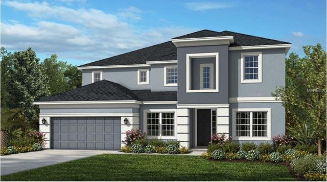 14186 Jomatt Loop, Winter Garden, FL 34787 (MLS #O5785683) :: The Duncan Duo Team