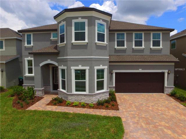 14231 Woodchip Court, Orlando, FL 32824 (MLS #O5785713) :: Cartwright Realty