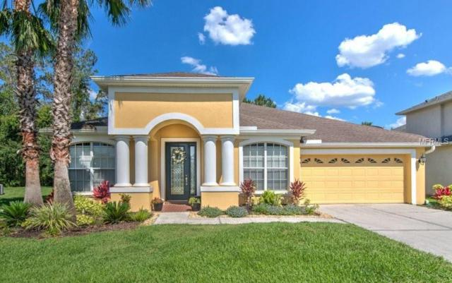 27209 Firebush Drive, Wesley Chapel, FL 33544 (MLS #O5785816) :: Delgado Home Team at Keller Williams