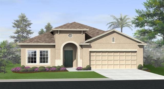 3385 Sagebrush Street, Harmony, FL 34773 (MLS #O5785853) :: Team Bohannon Keller Williams, Tampa Properties