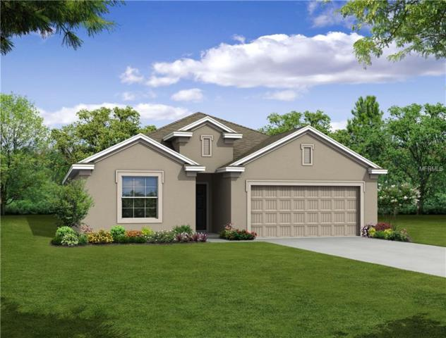 349 Briarbrook Lane, Haines City, FL 33844 (MLS #O5785873) :: Team Bohannon Keller Williams, Tampa Properties