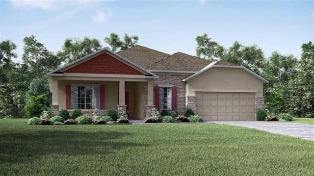 337 Briarbrook Lane, Haines City, FL 33844 (MLS #O5785882) :: Team Bohannon Keller Williams, Tampa Properties