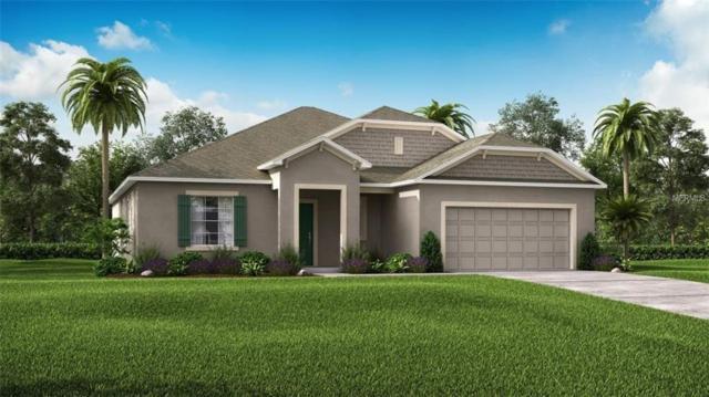 339 Briarbrook Lane, Haines City, FL 33844 (MLS #O5785892) :: Team Bohannon Keller Williams, Tampa Properties