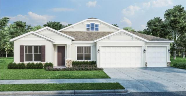 473 Nowell Loop, Deland, FL 32724 (MLS #O5786002) :: Team Bohannon Keller Williams, Tampa Properties
