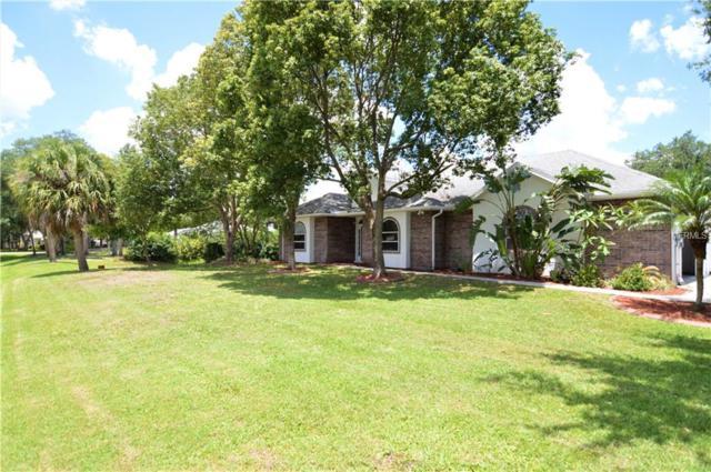 10420 Kankakee Lane, Riverview, FL 33578 (MLS #O5786180) :: Florida Real Estate Sellers at Keller Williams Realty