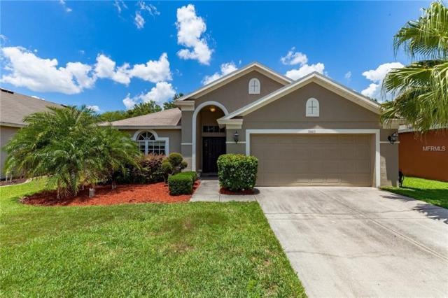 31411 Wrencrest Drive, Wesley Chapel, FL 33543 (MLS #O5786221) :: Premium Properties Real Estate Services