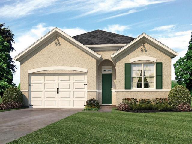 273 St. Georges Circle, Eagle Lake, FL 33839 (MLS #O5786302) :: Team Bohannon Keller Williams, Tampa Properties