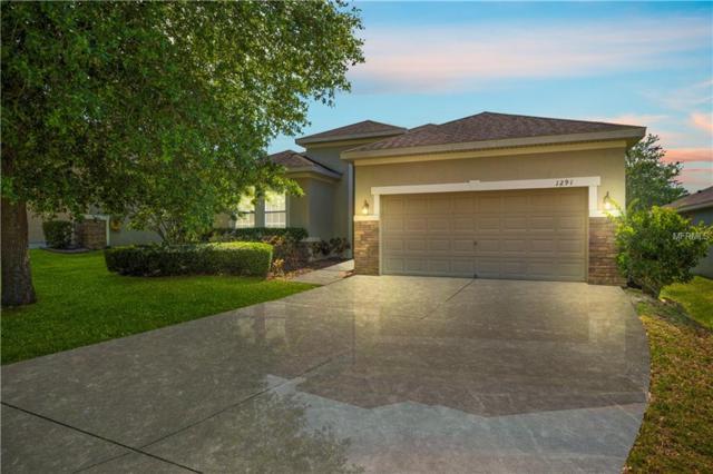 1291 Plumgrass Circle, Ocoee, FL 34761 (MLS #O5786315) :: The Duncan Duo Team