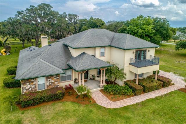 4615 Claire Rose Court, Mount Dora, FL 32757 (MLS #O5786333) :: Premier Home Experts