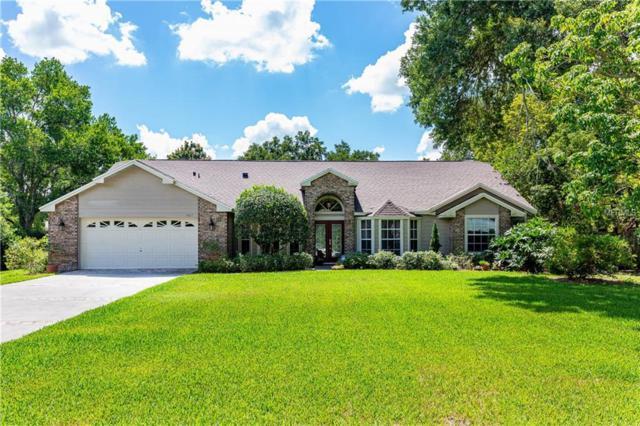 5817 Cove Drive, Belle Isle, FL 32812 (MLS #O5786347) :: RealTeam Realty