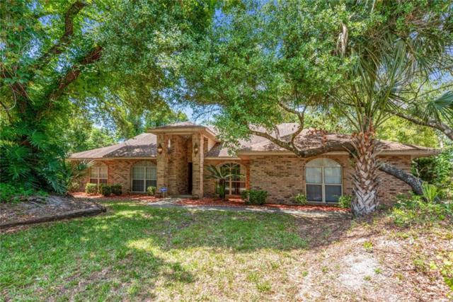 2088 Apricot Drive, Deltona, FL 32725 (MLS #O5786366) :: Premium Properties Real Estate Services