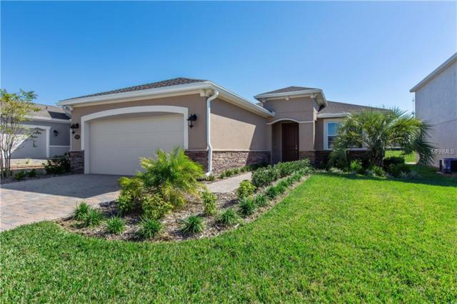 529 Adenmore Terrace, Deland, FL 32724 (MLS #O5786376) :: Griffin Group
