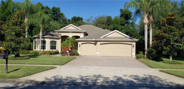 4346 Sea Rock Court, Apopka, FL 32712 (MLS #O5786416) :: Lovitch Realty Group, LLC