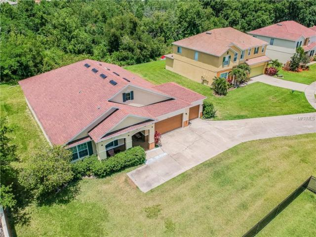 201 Black Springs Lane, Winter Garden, FL 34787 (MLS #O5786421) :: Premium Properties Real Estate Services