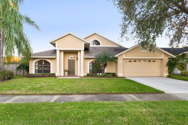 11419 Palm Pasture Drive, Tampa, FL 33635 (MLS #O5786504) :: The Duncan Duo Team