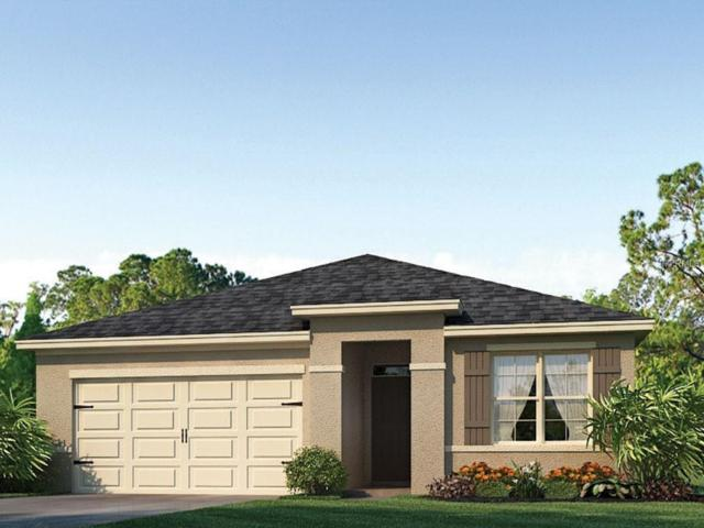 1730 Point O'woods Court, Mount Dora, FL 32757 (MLS #O5786673) :: The Duncan Duo Team