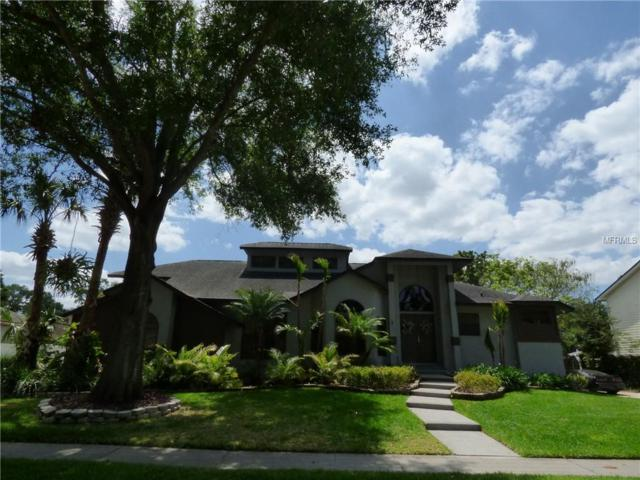 4272 Conway Place Circle, Orlando, FL 32812 (MLS #O5786959) :: The Duncan Duo Team